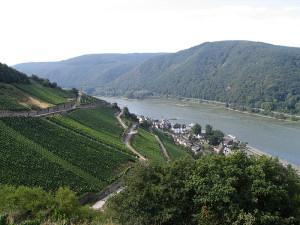 Rheingau - Sehenswürdigkeiten am Rhein